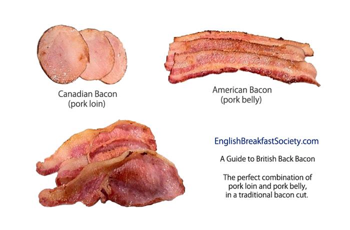 BaconGuide